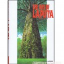 The art of Laputa Castle in the sky Artbook