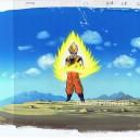 Dragon ball Z anime cel R682
