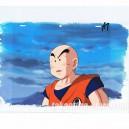 Dragon ball Z anime cel R1180