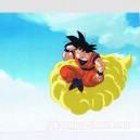 Dragon ball Z anime cel R1230