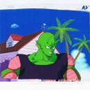 Dragon ball Z anime cel R1272