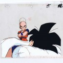 Dragon ball Z anime cel