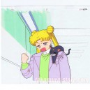 Sailor Moon celluloid