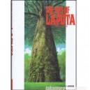 The art of Laputa Castle in the sky Artbook