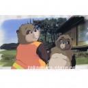 Pompoko anime cel Ghibli R510