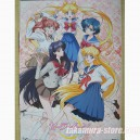 Sailor Moon Crystal Neowing poster