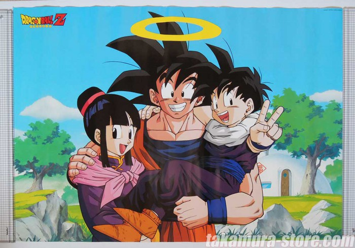 Dragon Ball Z Family Poster