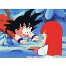 Dragon ball anime cel R1339