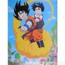 Poster Dragon Ball Z: Goku & Gohan nuage
